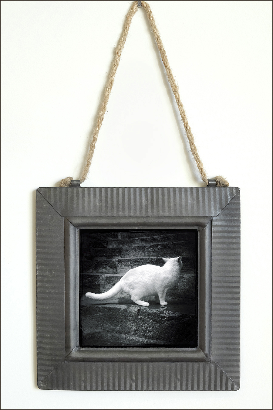 Tin Framed Metal Cat Print